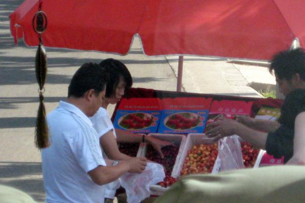 limcollege.edu staff Staff Profiles Desktops & Documents lola.rephann My Documents website BLOGS Hubspot Blogs Study Abroad China Cherries