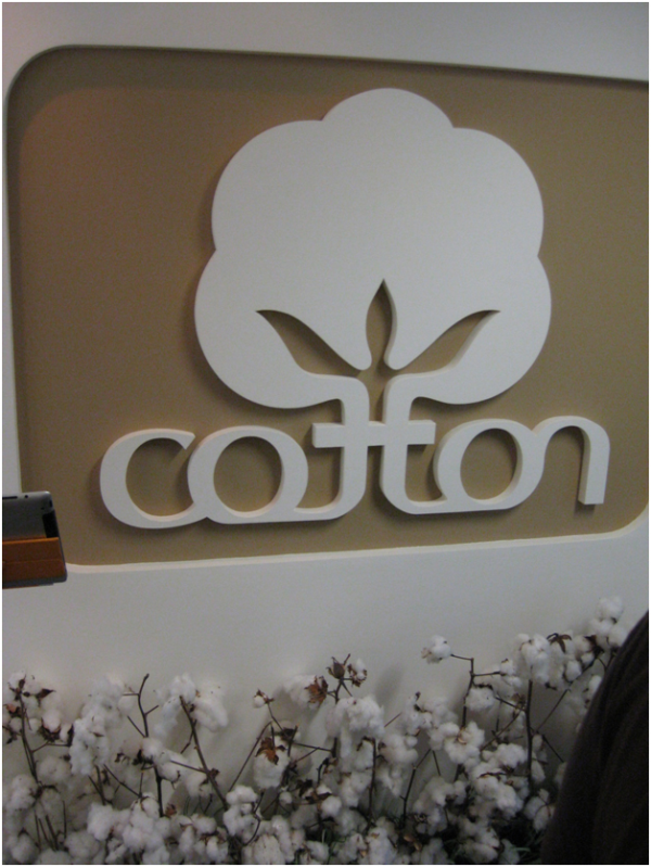 K  Institutional Advancement Photos Blogs Study Abroad China 2011 Cotton Inc resized 600