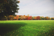 Aaron Ku - Central Park
