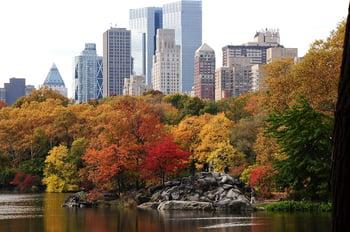 Central_Park_Fall.jpg