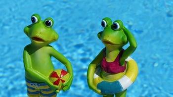 Frogs_Summer.jpg