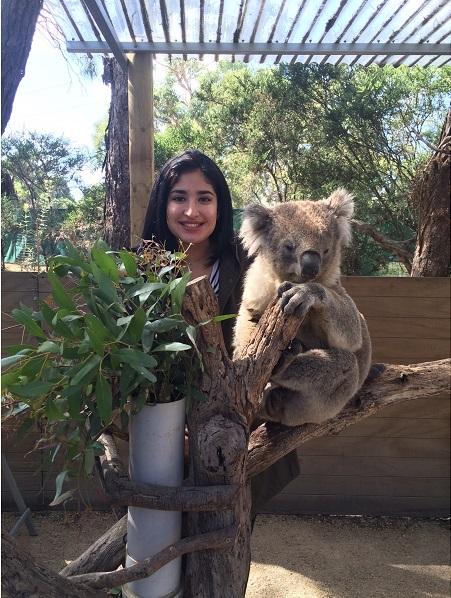 Nicole_Koala