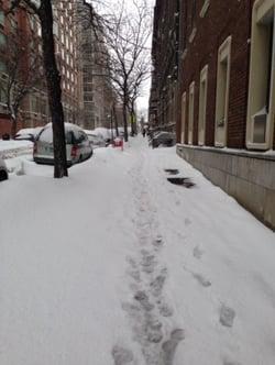 Snowy_steps.jpg