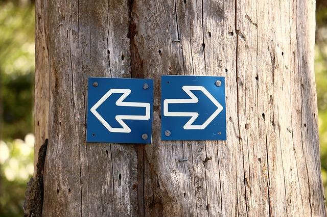 Tree_Arrows.jpg