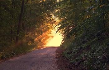 sunlight_road.jpg