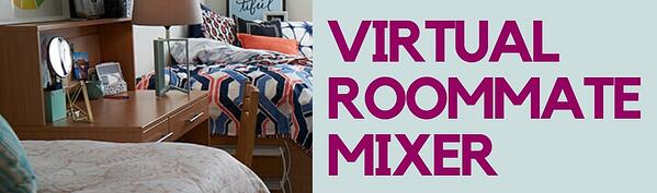 virtual roommate mixer (crop)