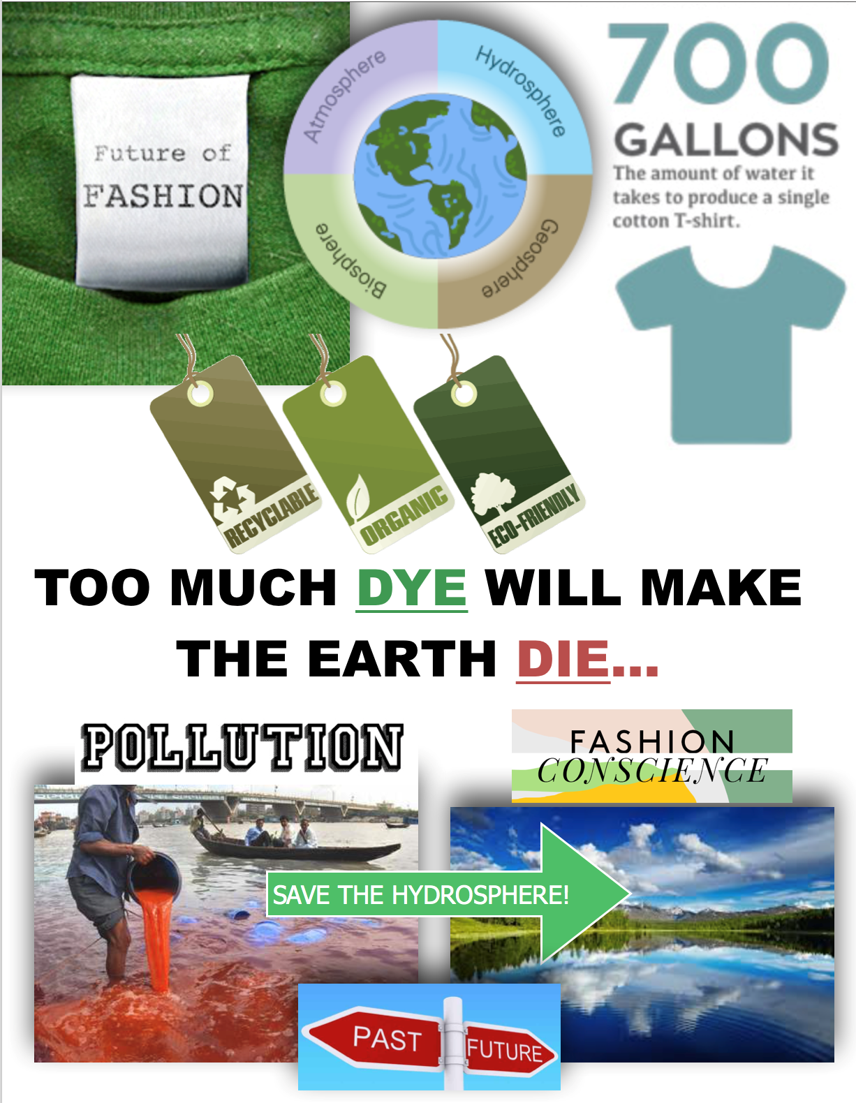 sustainable graphic.png