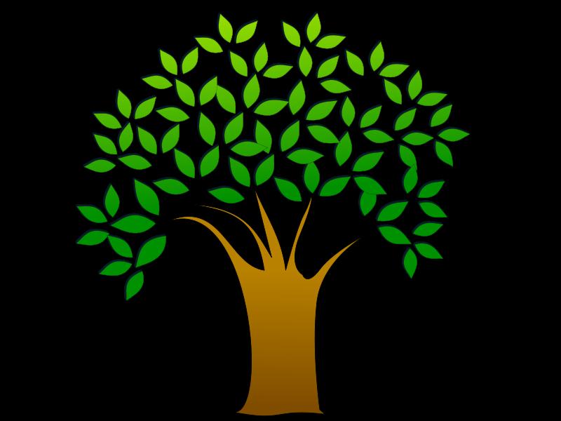 tree image.png